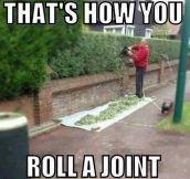 Roll it baby