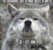 Scumbag groundhog