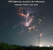 Wild lightning