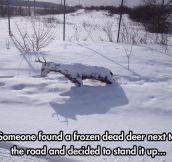 Oh, deer God…