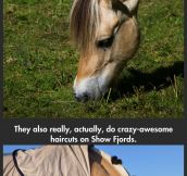 The horses in Frozen are real…