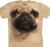 I didn't choose the pug life…