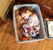 The most adorable nap ever…