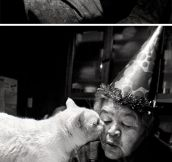 Japanese woman and her kitty best friend…