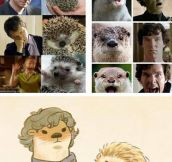 Sherlock and Redwall crossover…