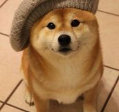 Wow. So hat. Very fashion. Such cute…