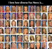 Diversity in Fox News…