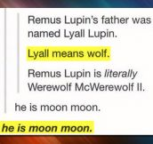 All hail moon moon…