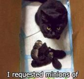 Minions of darkness…