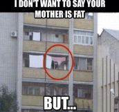 I don't want to say your mother is fat…