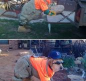 His specialty is roofing…
