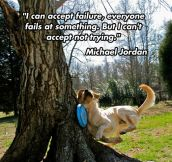 Michael Jordan on failure…