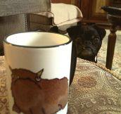 The pug of the mug…