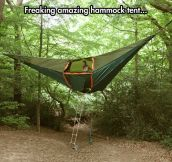 A hammock tent like no other…