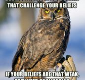 Challenge everything, specially your beliefs…