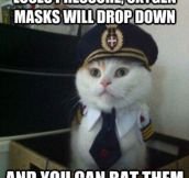 Captain Kitty here with some in-flight safety tips for you…
