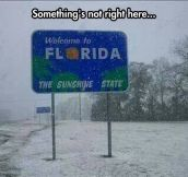 The sunshine state…