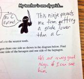 The test ninja…