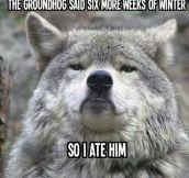 Scumbag groundhog…