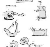 First time doing yoga really confused me…