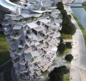 The ultimate tree house: Amazing white apartment block with trunk and branches will be built on French Mediterranean