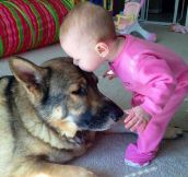 13 Dog-Child Best Friends That Will Melt Your Heart to Pieces