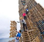 Yes, Those Are People Stacking Thousands Of Pallets. But The Crazy Part Is What They Do Next.