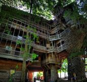 These 18 Tree Houses Are More Whimsical Than Your Wildest Dreams And They Actually EXIST!