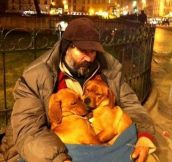 A homeless man keeps 2 stray puppies warm during the night…