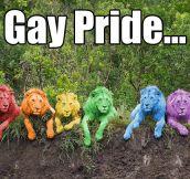 Fear the rainbow