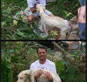 Man Saves Wounded Dog