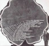 Life Of a Tree From 550 To 1891