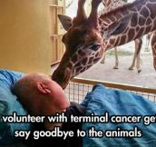 Most Beautiful Goodbye Kiss