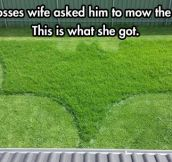 The lawn she deserves, but not the one she needs right now…