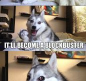 This Husky Knows Its Jokes