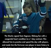 The Best Day Of a Shark's Fan