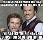 Friendship Is Pretty Weird