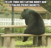 Existentialist Bear