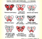 Butterfly Signs