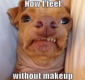 Feeling ugly in the mornings…