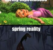 Expectations about Spring…