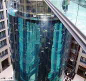 Aquarium elevator. Berlin Germany
