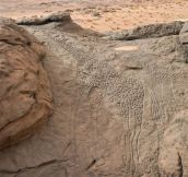 10000 year old rock engravings of giraffes in the Sahara Desert, Niger.