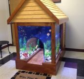 Went to local vet clinic to drop off my dog for surgery and was surprised to see this awesome fish tank/dog house!