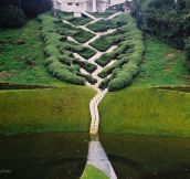 Creatively Crazy Landscape Architecture