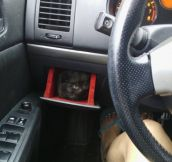 Her car comes with a kitten holder.