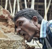 Meet the man who eats bricks!
