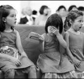 Little girls react differently to the kiss at a wedding.