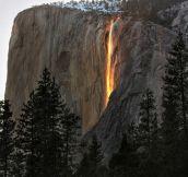 Yosemite falls turn gold at sunset.