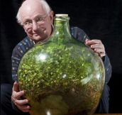 80-Year-Old Man Hasn't Watered This Sealed Bottle Garden Since 1972 And It's Still Alive